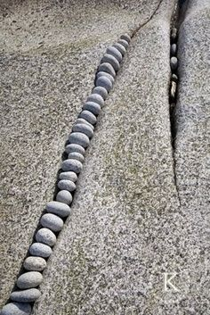 small rocks inside the crack of a large one