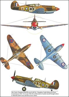 Curtiss Tomahawk Mk IIB 'fighter of South African air force, Cyrenaica 1941 Navy Aircraft, Ww2 Aircraft, Fighter Aircraft, Military Aircraft, South African Air Force, Airplane Drawing, Kitty Hawk, Ww2 Planes, Royal Air Force