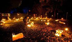 Dit jaar ga ik ook naar Allerzielen Alom op de begraafplaats Houtrijk en Polanen in Zwanenburg. Allerzielen Alom is de kunst tot het herdenken. Vieren van het geleefde leven.