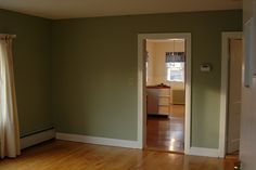 sage green living room - Google Search