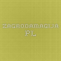 zagrodamagija.pl