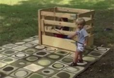 Share this Baby rodeo Animated GIF with everyone. Gif4Share is best source of Funny GIFs, Cats GIFs, Reactions GIFs to Share on social networks and chat.