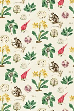 Capuchins Curtain Fabric from Sanderson Voyage of Discovery Collection. A woven curtain fabric featuring large prints of capuchin monkeys, parrots, golden yellow flowers with green foliage and pomegranates on a cream background. Sanderson Fabric, Botanical Kitchen, Fabric Design, Pattern Design, Made To Measure Curtains, Textiles, Yellow Accents, Fabric Wallpaper, Travel