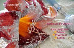 Fried daylilies