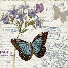 Papillon Tales II by Pela Design art print