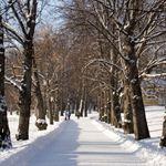 Heinola, Finland Photo Galleries, Gallery, Outdoor, Finland, Outdoors, Outdoor Living, Garden