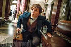 These 'Fantastic Beasts and Where to Find Them' Photos Will Make 'Harry Potter' Fans Squee With Delight