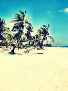 Tulum, Mexico - been there! Favorite place in the whole world!! -C