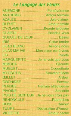 le langage des fleurs: amour, relationships,