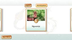 A flash card language app developed by the Northern Territory Library comprising everyday words and phrases in Anindilyakwa and English. People Around The World, Language, Place Card Holders, English, App, Digital, Words, Projects, Log Projects