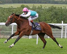 Frankel winning Goodwood's Group 1 Sussex Stakes