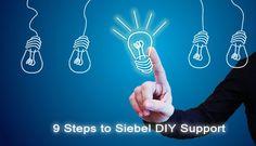 Nine Steps to Oracle Siebel DIY Support