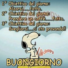 Verona, Italian Humor, Charlie Brown And Snoopy, Good Tutorials, Lets Do It, Great Words, Day For Night, Cheer Up, Say Hello
