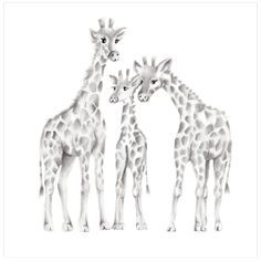 This loving giraffe family is a print from Nicky's original pencil drawing. Sizes: 8.5 x 11, 11 x 14 and 16 x 20. Please make your selection from the drop-down menu at checkout. Paper: The giraffes ar