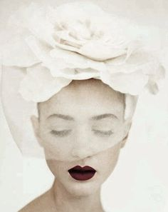 ❖Blanc❖ White flower birdcage veil