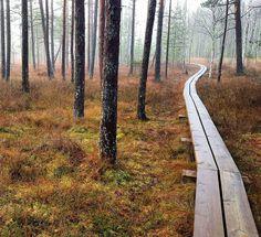 Valkmusan kansallispuisto, Pyhtää