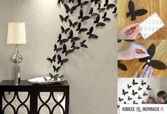 motyle na ścianie