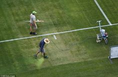Ground staff paint a barren patch of the pitch green after the surface was damaged by a One Direction concert two nights earlier