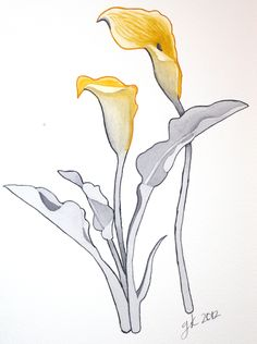 calla lilies drawing | ... Day Watercolor Fest–Calla Lily Version 2 | Afternoon Artist