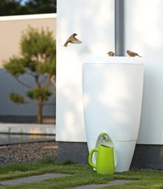 Rain barrel/ rain water collection - perfect for a small space and modern garden. Form finally meets function