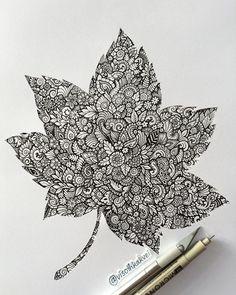 "5,835 Likes, 102 Comments - Visothkakvei (@visothkakvei) on Instagram: ""Another leaf • Fall"""