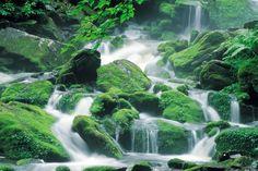 Mount Odaesan National Park, Gangwon, Korea - 2000x1333px