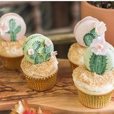 Olha que lindo! Por @sugarcrushsweets #encontrandoideias #blogencontrandoideias #festacactos #galeriacactos Cactus Cupcakes, Vanilla Bean Cupcakes, Stress Relief, Macarons, Crushes, Sweets, Sugar, Macs, Hand Painted