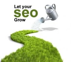 Professional Search engine optimization solutions for aspiring businesses and entrepreneurs.