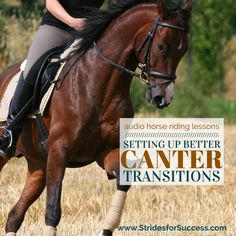 Setting Up Better Canter Transitions - Strides for Success Horse Riding Tips, Horse Tips, Equestrian Outfits, Equestrian Style, Equestrian Fashion, Equestrian Problems, Horse Exercises, Riding Lessons, English Riding