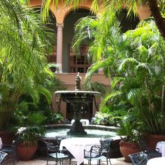 The Biltmore Hotel Miami sat at that very table and had lunch with the children May 2004 great holiday