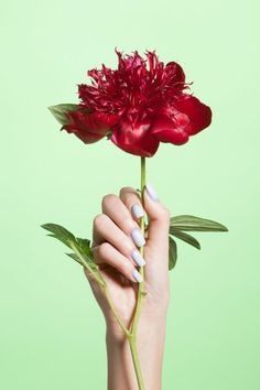 Spring Polish Trends 2014 - Nail Art