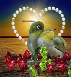 Yayla Çiçeği 6 saat · (¯`' Beautiful Love Pictures, Beautiful Gif, Love Images, Beautiful Birds, Love You Gif, Flowers Gif, Hearts And Roses, Online Image Editor, Good Morning Gif