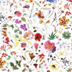 This fabric is absolutely stunning! It's just so beautiful! About Floral Eve – this design is taken from a large botanical painting called 'The Herbarium Specimen', painted by Rachel Pedder …