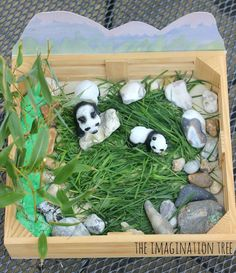 Make a panda bear small world play scene for imaginative play, understanding animal habitats and story telling with kids!