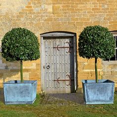 Frame a Door with Standard Bay Trees- in Country Garden Design Ideas - how to a create a well-planned herbaceous border and farmhouse or cottage look, ideas for gardens both big and small. Large Garden Planters, Tree Planters, Garden Urns, Potted Trees, Trees To Plant, Planter Pots, Copper Planters, Large Garden Ornaments, Vegetable Garden Tips