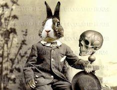 HALLOWEEN Anthropomorphic Art. Bunny and Skull