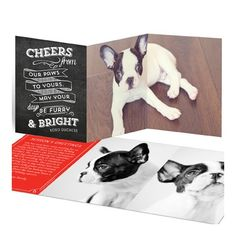 Holiday Card Collection - HOLIDAY DOG - Photoshop Templates for ...