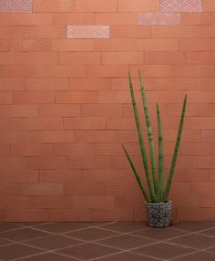 Coleção Terracota | Lançamento 2018  Brick Patchwork Rosso | Medida 7 x 23 cm