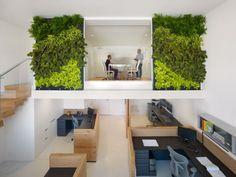 Jardín vertical de interior en unas oficinas en San Francisco