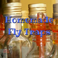 Living in the country is awesome, but it does have its drawbacks . like bugs! Homemade fly traps can help you solve part of your crawly problems, though, and do it on the cheap and in an environmentally friendly way. Homemade Fly Traps, Country Living, Bugs, Canning, Bottle, Awesome, Country Life, Beetles, Flask