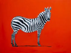 Painting of a Zebra on Red.  Oil on Canvas.  Artist : Charlotte Partridge