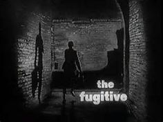 The Fugitive classic tv show from the 60's