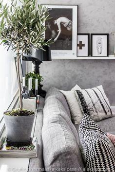 olive tree in home decoration. scandinavian design