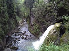 Cheile Galbenei, Padis, Romania Romania, Waterfall, Places To Visit, Europe, River, Seasons, Nature, Outdoor, Beautiful