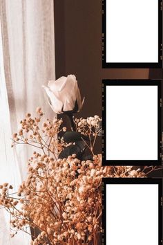 Flower Background Wallpaper, Flower Backgrounds, Creative Instagram Stories, Instagram Story Ideas, Polaroid Picture Frame, Polaroid Template, Birthday Post Instagram, Instagram Frame Template, Photo Collage Template