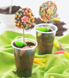 OREO Dirt Flower Cups - These are great fun for a kid's party! Why not make the mousse and let the kids do the rest.