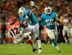 MIAMI GARDENS, FL - OCTOBER 31: (R) Dannell Ellerbe #59 of the Miami Dolphins catches an interception as (L) Mohamed Sanu #12 of the Cincinnati Bengals and (C) Jimmy Wilson #27 of the Miami Dolphins battle at Sun Life Stadium on October 31, 2013 in Miami Gardens, Florida.