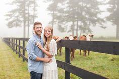 Cattle farm Engagement