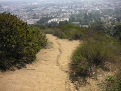 Where you can find the Best Hiking Trails in #LA!