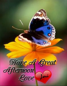 Good afternoon everyone have a nice time♥★♥.
